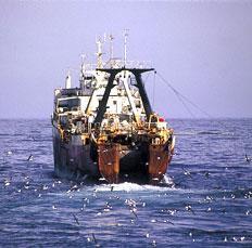 Eu fischereireform kommission streicht subventionen für den bau von